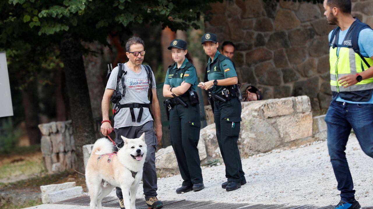Un voluntario, con su perro, antes de iniciar la jornada de búsqueda este lunes