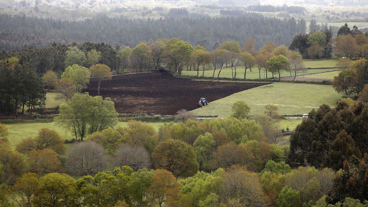 Imagen de archivo de una cata de orujo de Galicia, uno de los licores que Bruselas ha incluído también en la lista