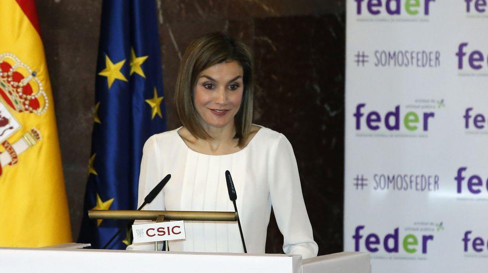 La reina Letizia pide mayor coordinación en el tratamiento e investigación de las enfermedades raras.Alonso, Saénz, CAsado y Cifuentes