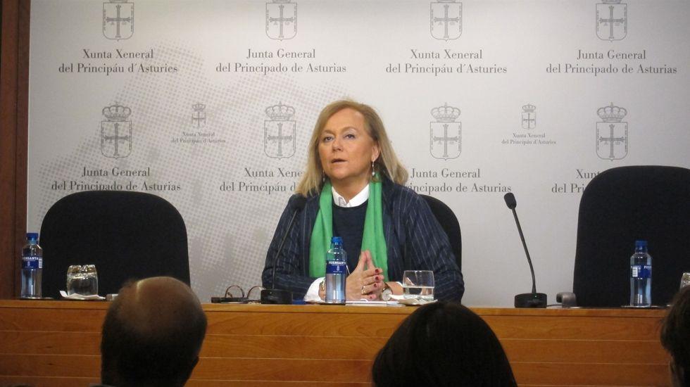 Mercedes Fernández en rueda de prensa.Mercedes Fernández en rueda de prensa