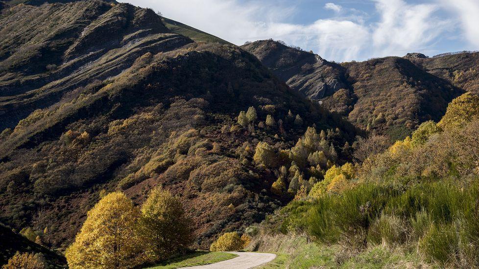 Un aspecto de los montes de Visuña, en O Courel