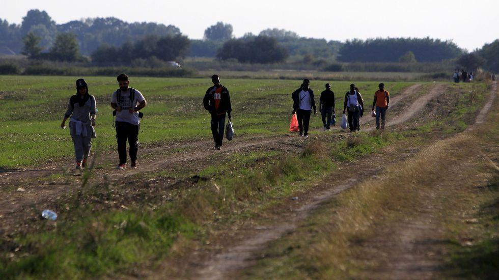 Inmigrantes caminan por una carretera después de entrar en Hungria a través de su frontera con Serbia