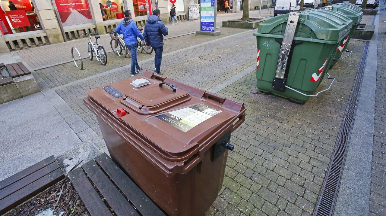 Contenedores del plan Composta (marrón) y de orgánicos en las calles de Pontevedra