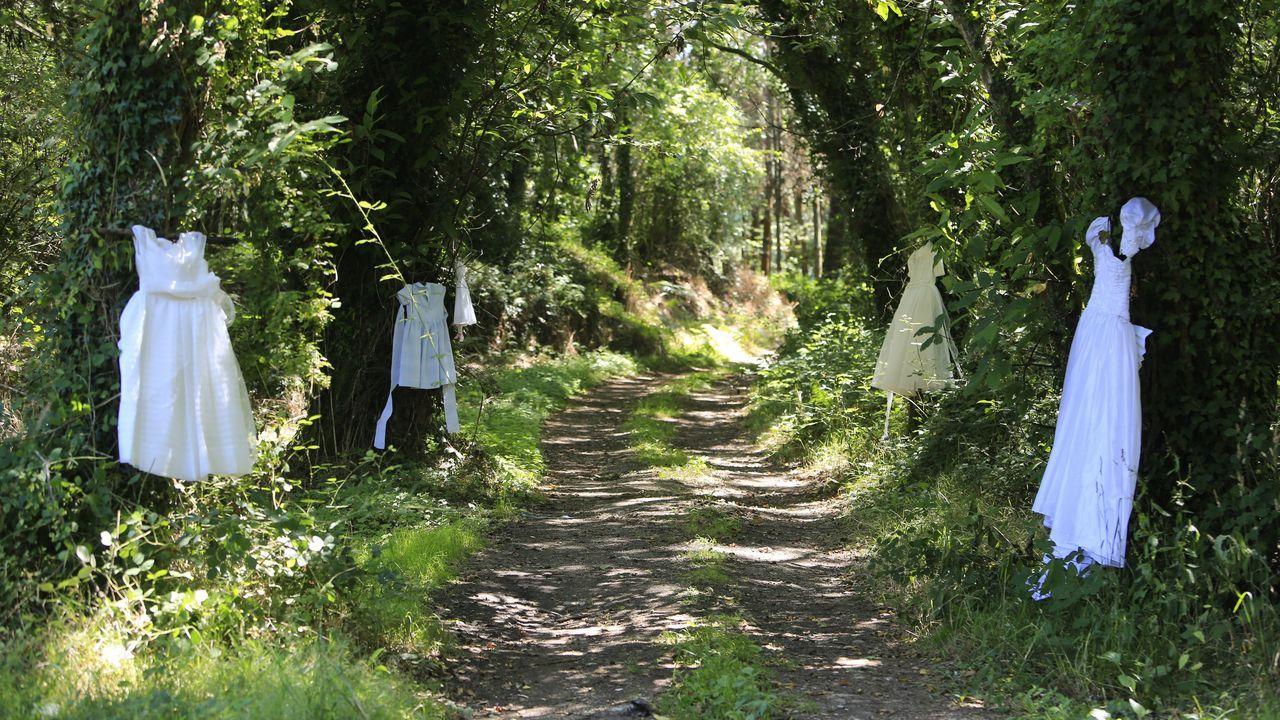 Vestidos de novia, comunión y bautizo cuelgan sin motivo aparente de los árboles en el Camiño dos Caxigueiros