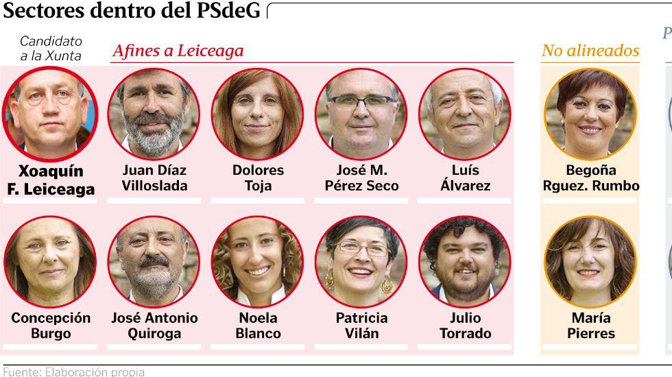 Sectores dentro del PSdeG