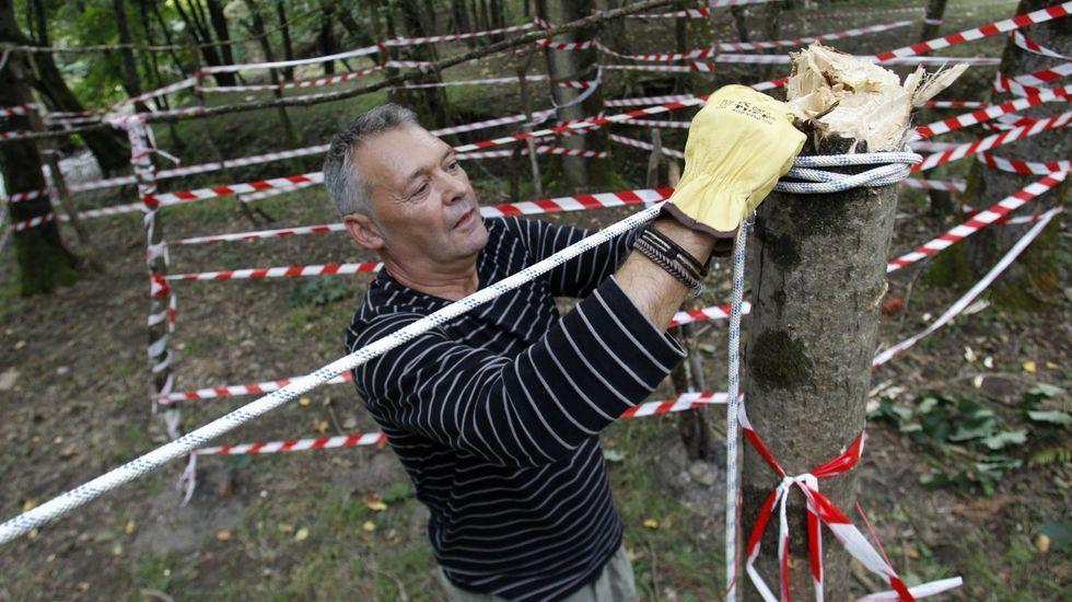 La imagen de los romeros reservando espacio las semanas previas no se repetirá este año