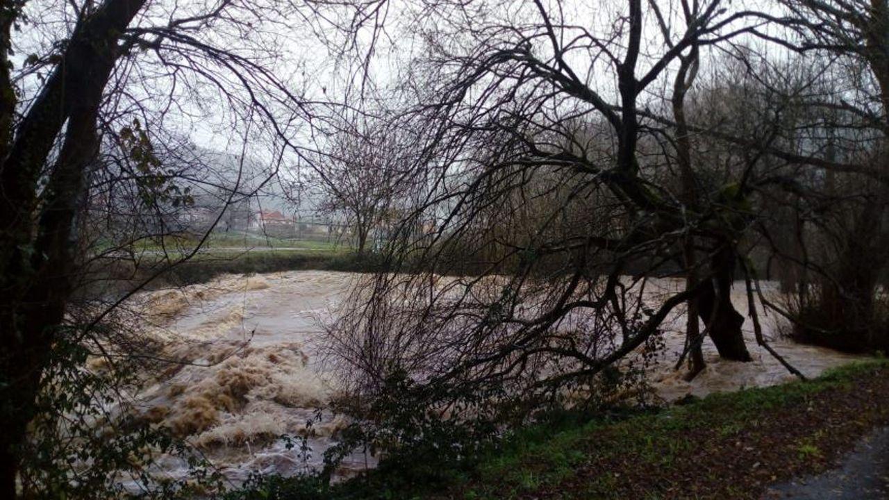 Crecida del río Narcea
