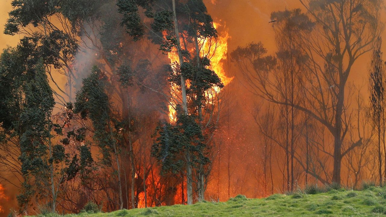 Incendio en las proximidades de Naves (Llanes)