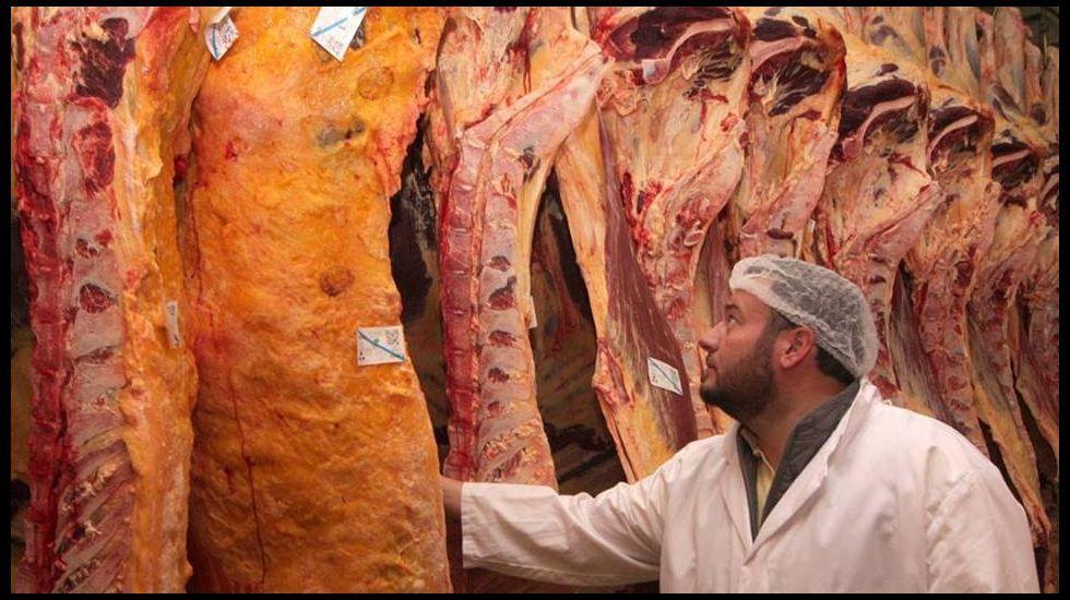 Uncamino sin caminantes.Pablo Díaz ayer junto a parte de su rebaño de vacas rubias en O Corgo