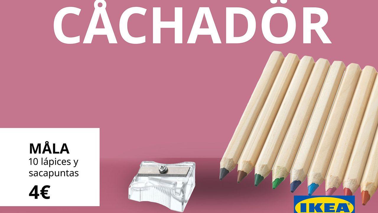 Así celebra IKEA el Día de Asturias.Los cachorros, ahora, ubicados en la casa de un vecino.