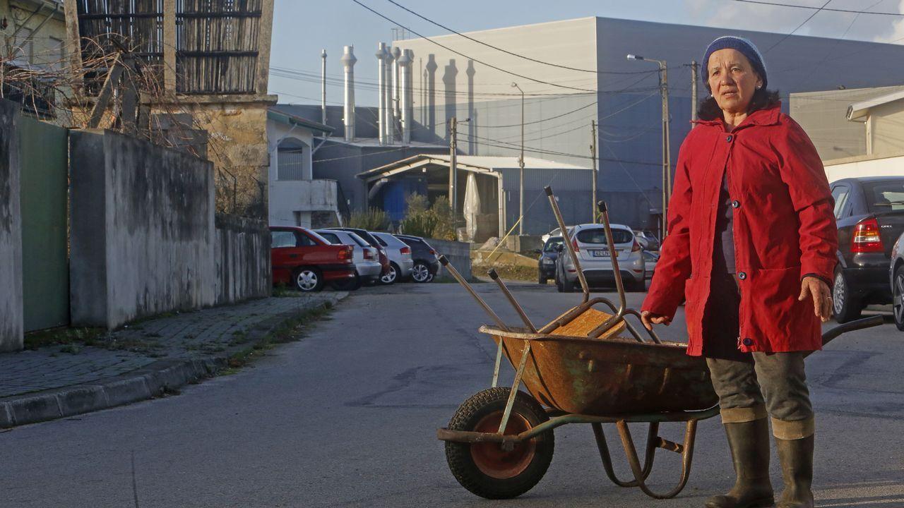 La economía de Portugal conduce a varias velocidades