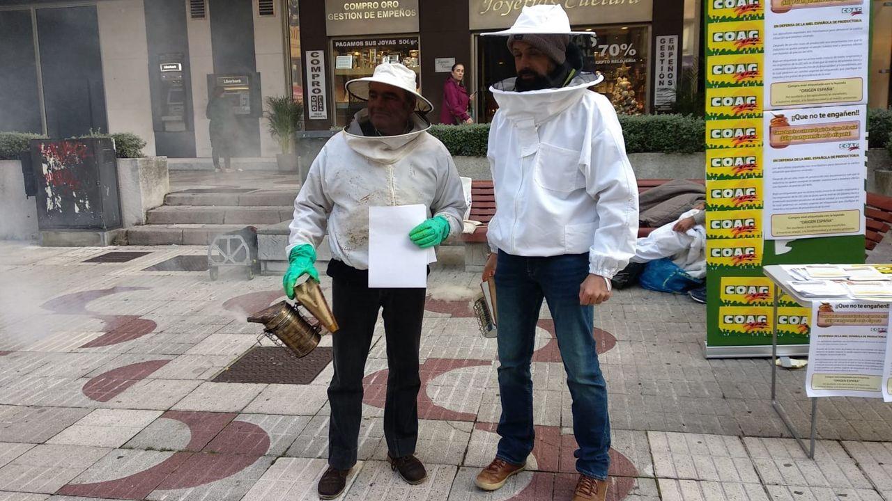 Recogida de ocle en Gozón.Protesta en Oviedo organizada por los apicultores