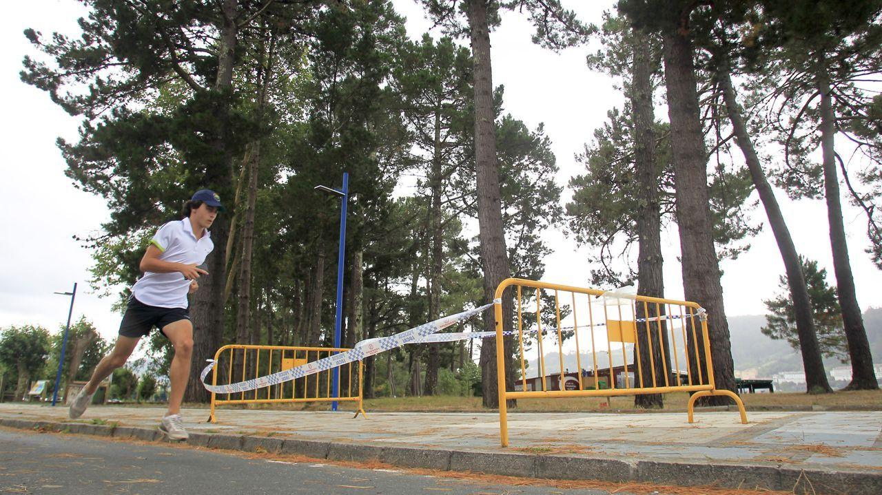 La zona del paseo donde cayó la rama que mató a una mujer en Cabanas, acordonada