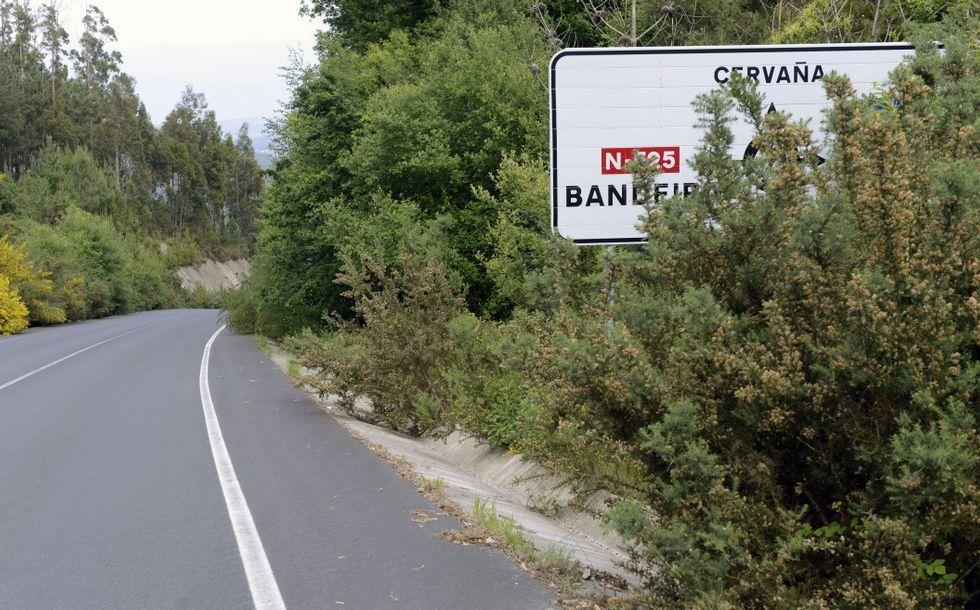 La maleza tapa las señales e invade cunetas y carretera.