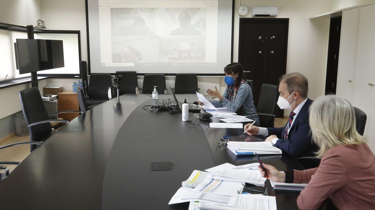 La conselleira de Emprego, María Jesús Lorenzana, durante la reunión telemática sobre el tercer plan de rescate a empresas y autónomos