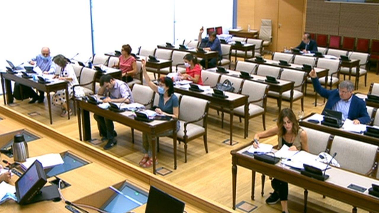 Votación en el grupo de trabajo de Políticas Sociales dentro de la comisión de Reconstrucción