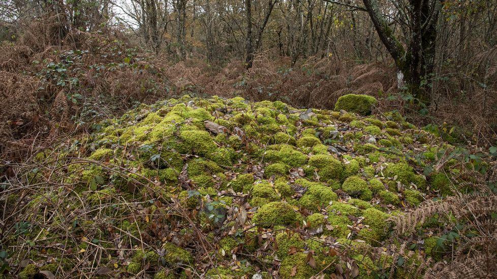 En la zona abundan los cúmulos de cantos rodados procedentes de las minas