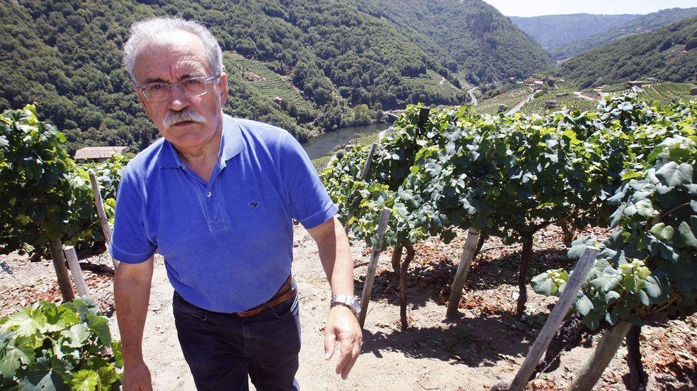 Peregrinación de camiones antigüos por Lugo.José Mouriño Cuba traballou na Consellería de Medio Rural e é un experto coñecedor da Ribeira Sacra