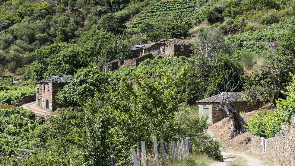 A mediados de los ochenta, buena parte de los vecinos de San Pedro de Baños se mudaron a la cercana aldea de O Colado
