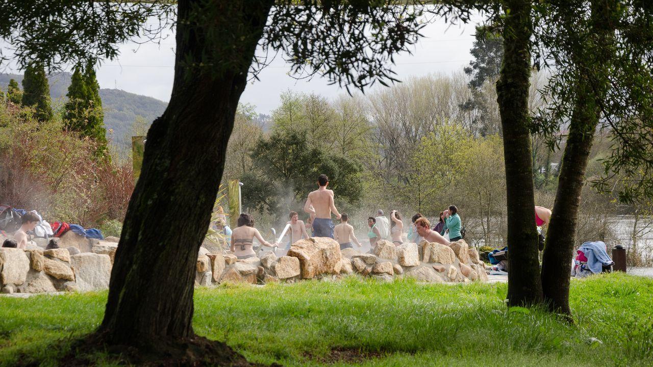 Maleza en las calles de Ourense