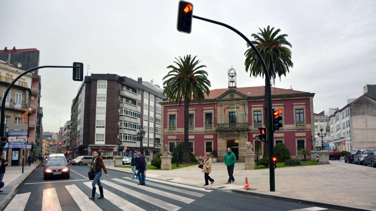 Las palmeras de Ravella