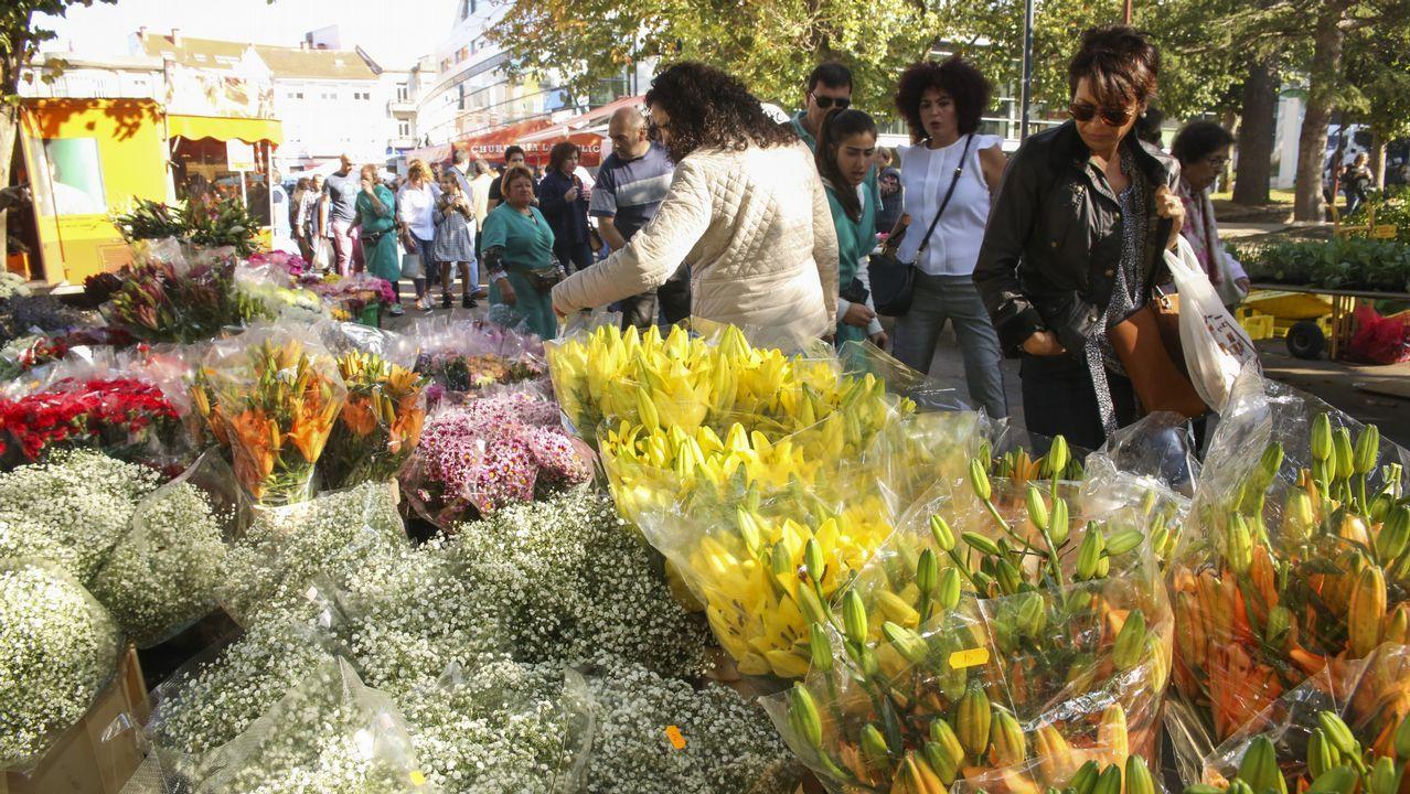 Mucho color y muchas flores en el feirón de Carballo: imágenes