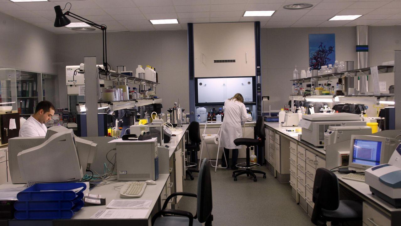 En la compañía Biofabri, con base en Porriño, también se prepara una vacuna contra la tuberculosis