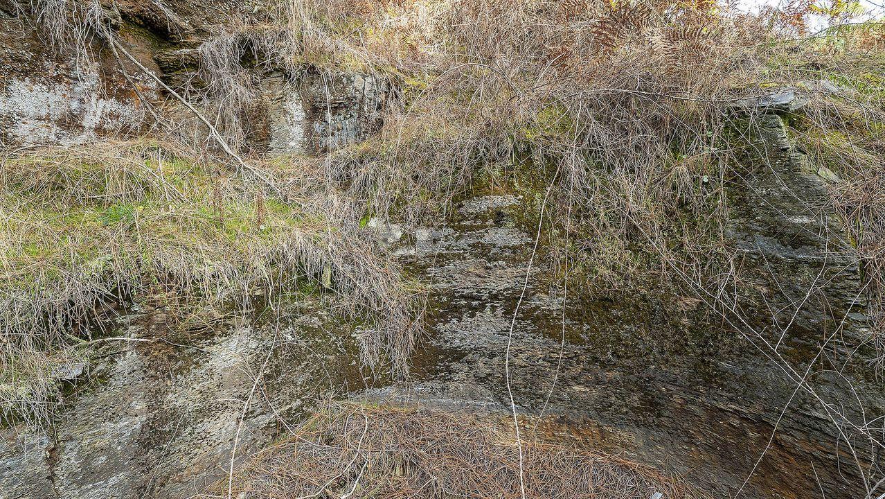 Un aspecto de la pared del pozo, tallada en la roca y de forma semicircular