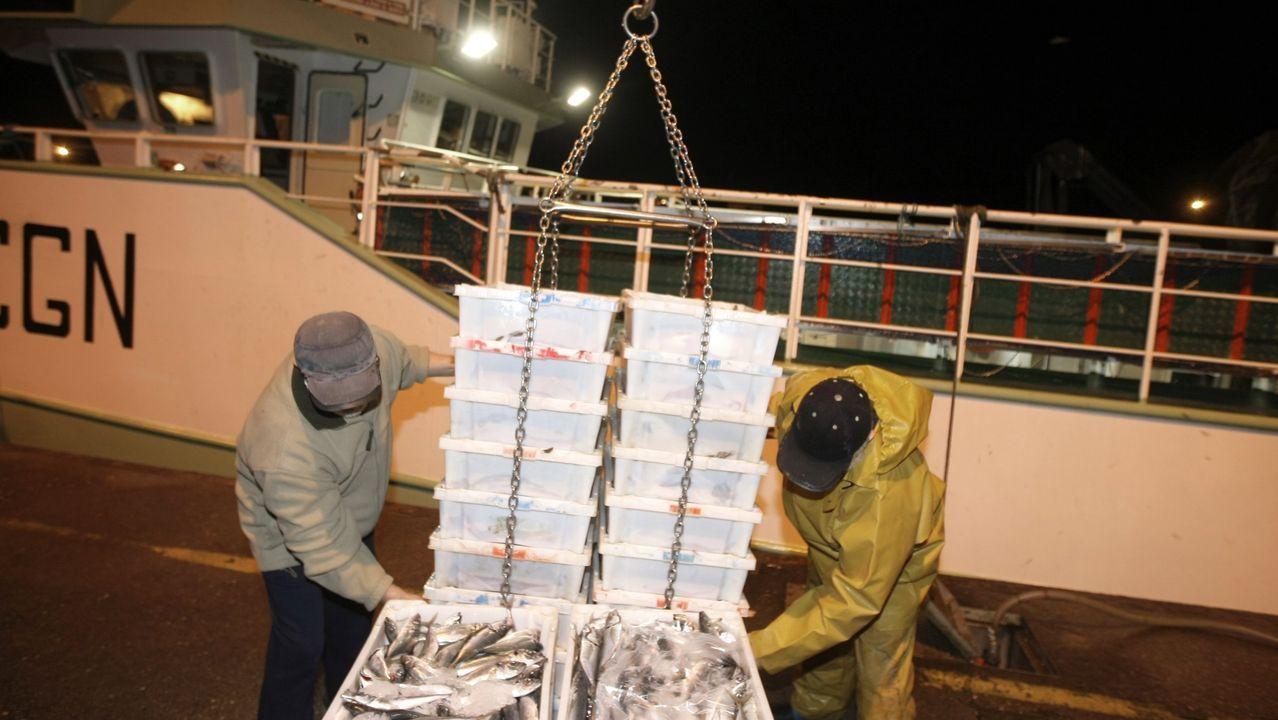 Puertos como Burela, en la imagen, Celeiro, A Coruña, Ribeira o Vigo continúan abasteciendo de pescado fresco a mercados de distintas localidades españolas