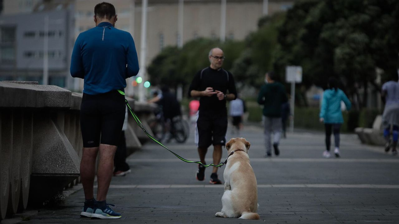 Paseantes y deportistas en el Paseo Maritimo de A Coruña