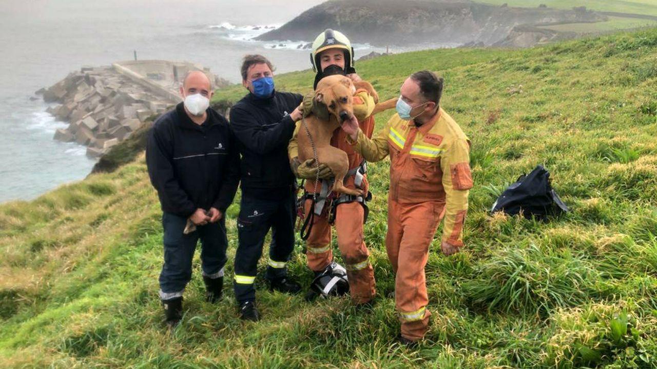 Videoclip de «Rambalín».Perro rescatado esta mañana en un acantilado en Puerto de Vega, en Navia