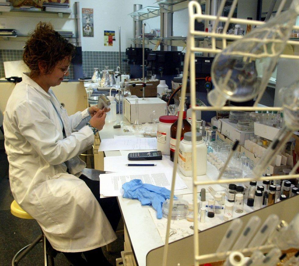 Investigadora en el laboratorio de Química y Física de la Universidad de Vigo.
