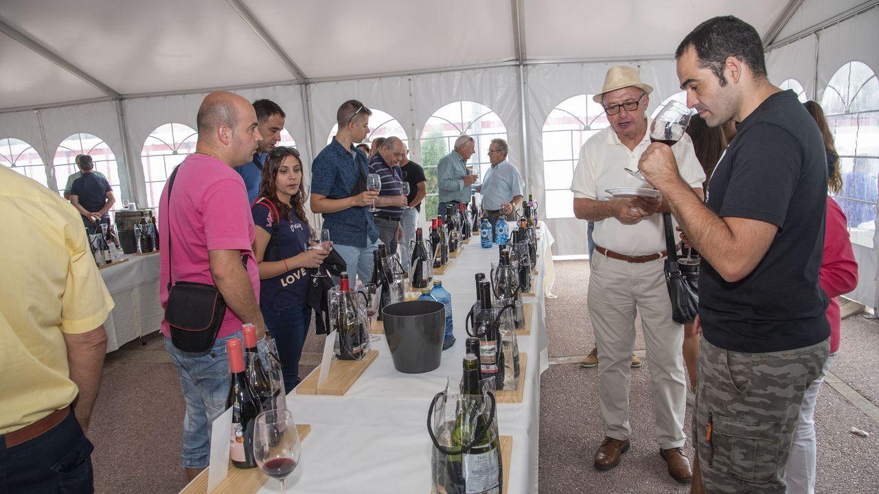 El Túnel do Viño de Amandi se consolida en su tercera edición con la participación de 31 bodegas