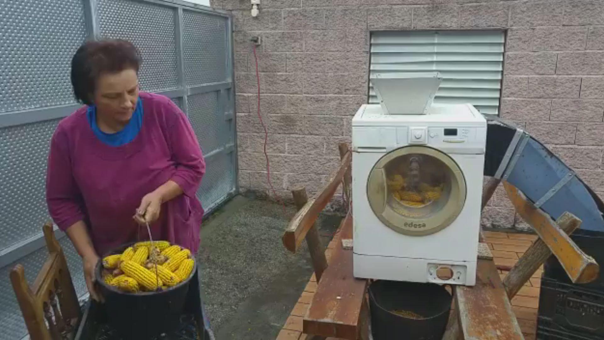 Una vieja lavadora, el mejor «debullador de millo».Enma Rodríguez y Martín Méndez, enfermeros de profesión, comparten su visión