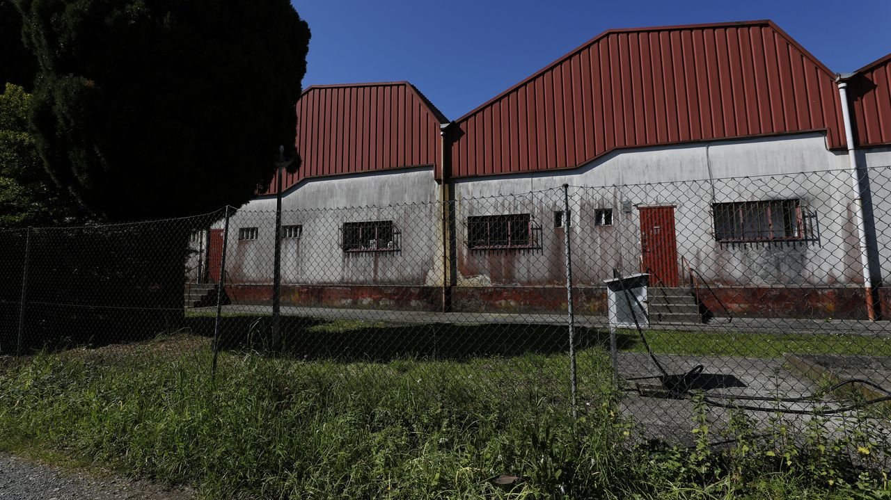 Imaxe do matadoiro comarcal de Viveiro, sen servizo desde o pasado 30 de abril