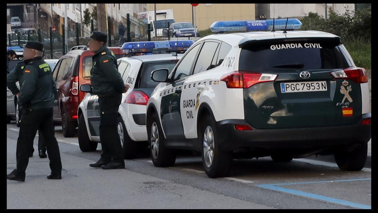 Rescatados seis cachorros enterrados vivos en Teruel.Helicóptero del SEPA