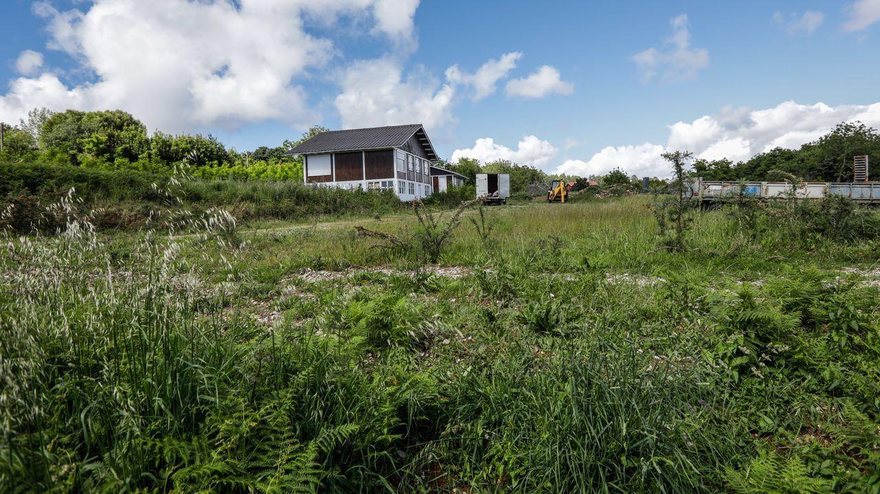 En la parcela donde se proyecta la planta, la empresa cuenta con dos casas de madera y almacena maquinaria