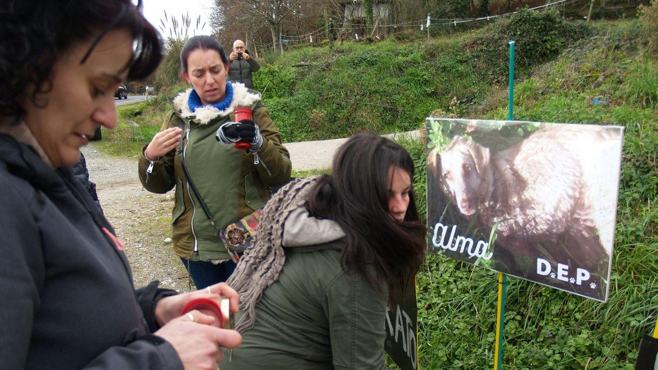 Defensores de los animales colocaron un cartel con velas en el lugar en el que dispararon a Alma