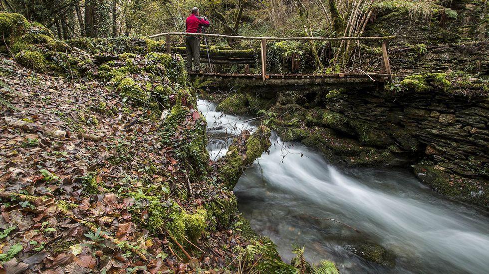 El puente de As Reboleiras salva el impetuoso caudal del río Seceda