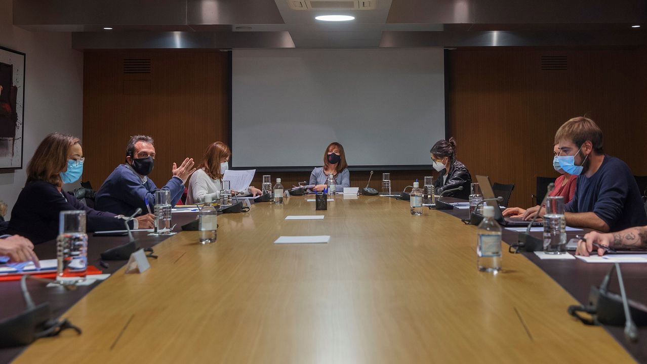 La consejera de Hacienda, Ana Cárcaba (c), ha continuado este sábado la negociación de los presupuestos del Principado para 2021 con una reunión a tres bandas en la que participarán representantes del PSOE, Podemos (d) e IU (i).