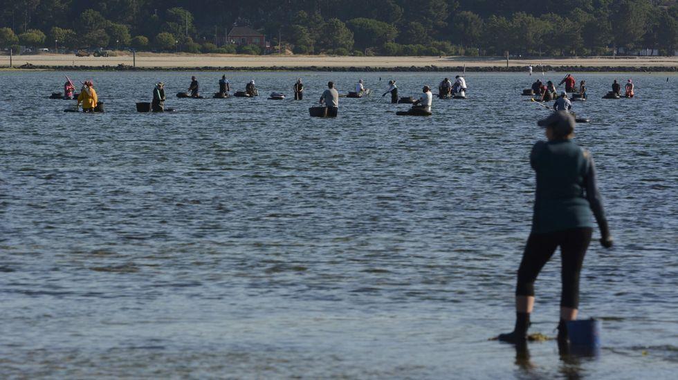 Así de concurrido, con numerosos pescadores recreativos, estaba el muelle de Malplica una noche de junio del año pasado