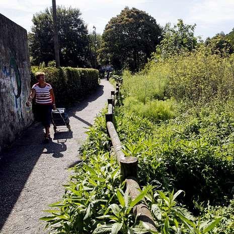 En el callejón de Hortas la maleza devora el vial.