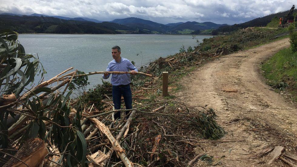 Laostra rizada se expande por las rías de A Mariña