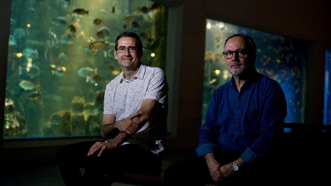 acuario.Marcos Pérez Maldonado (izquierda) y Paco Franco (derecha) están al frente del espacio. Son, respectivamente, el director de los Museos Científicos Coruñeses y el director técnico del Aquarium Finisterrae