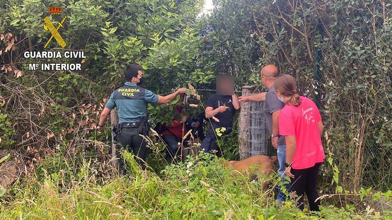 Intervención de la Guardia Civil para localizar a un hombre de 80 años desaparecido en Villaviciosa