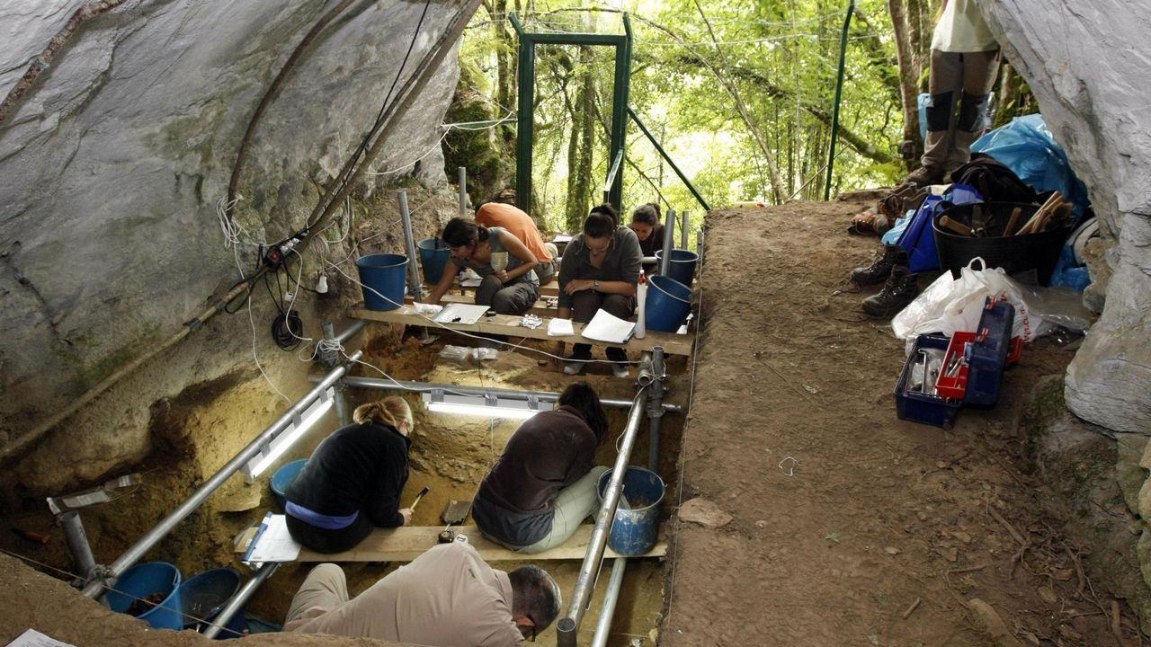 El estudio demuestra que un oso cavernario de Cova Eirós y un oso pardo de Austria tuvieron antepasados comunes. Sobre estas líneas, réplica de un esqueleto de oso cavernario en el museo geológico de Quiroga