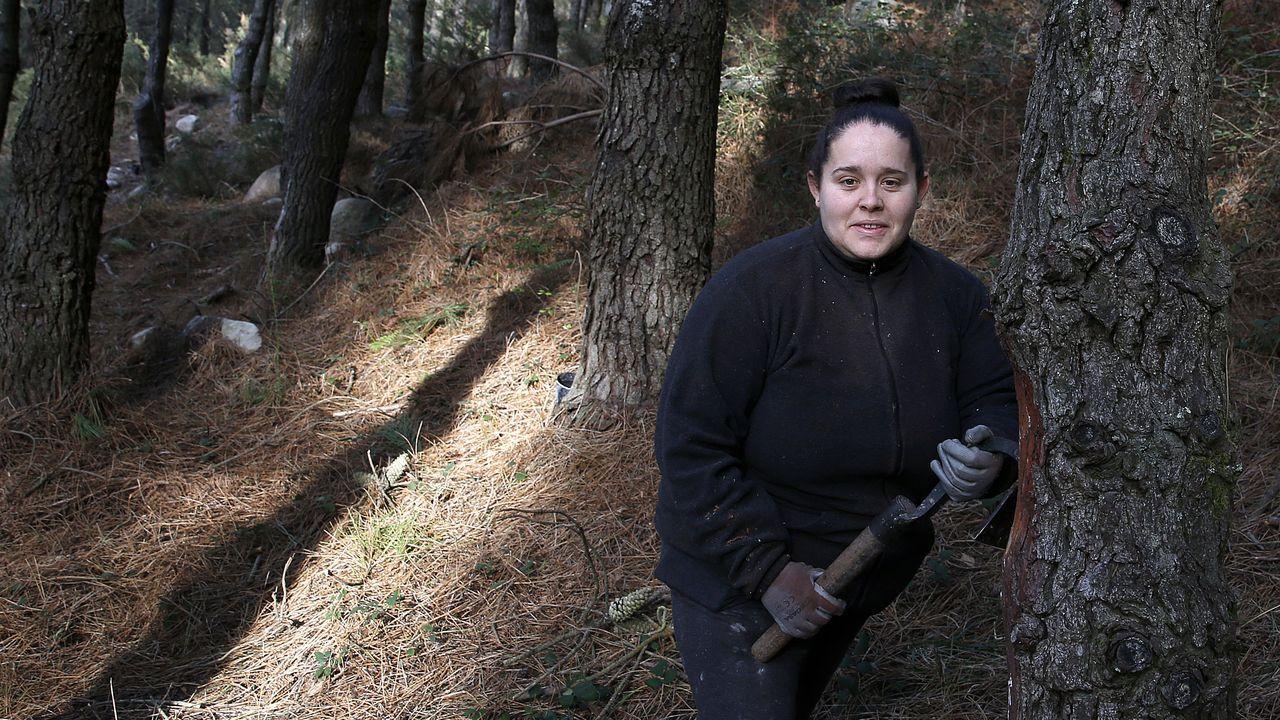 Dalia Sendón estaba en el paro cuando decidió hacer un curso que cambió su vida