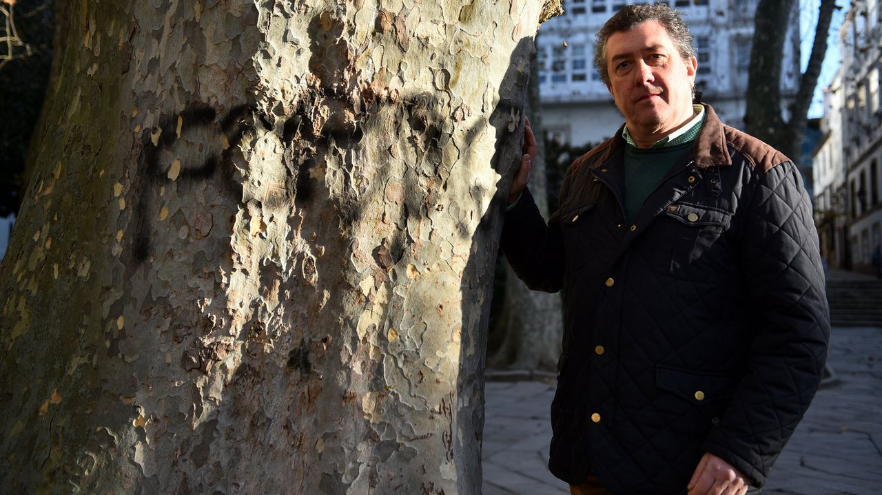 Juan Borrego, de Non Máis Pintadas, junto a uno de los árboles de la plaza de Azcárraga