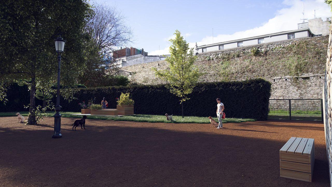 Proyecto del nuevo canil del casco histórico de Lugo
