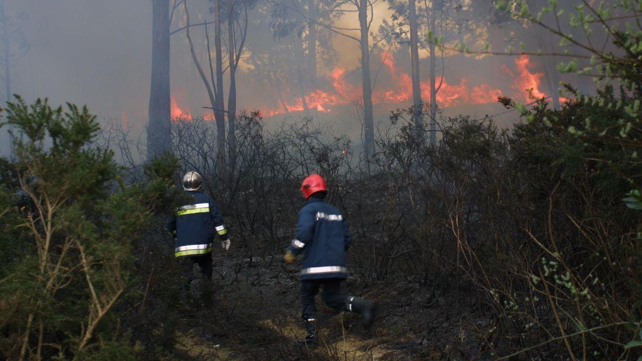Seis de los siete contratos en Trabada son para prevención y extinción de incendios forestales